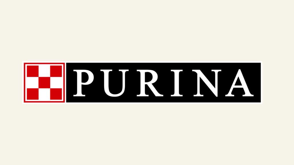 Пурина + Mail.ru Питомцы, интернет проект о животных. Видео инфографика